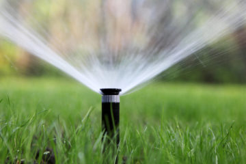 Landscape Irrigation
